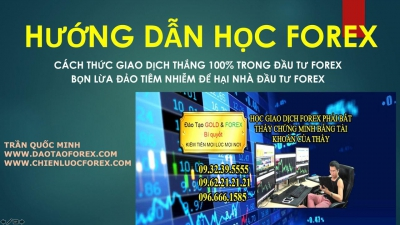 HỌC FOREX CÁCH GIAO DỊCH FOREX THẮNG 100%